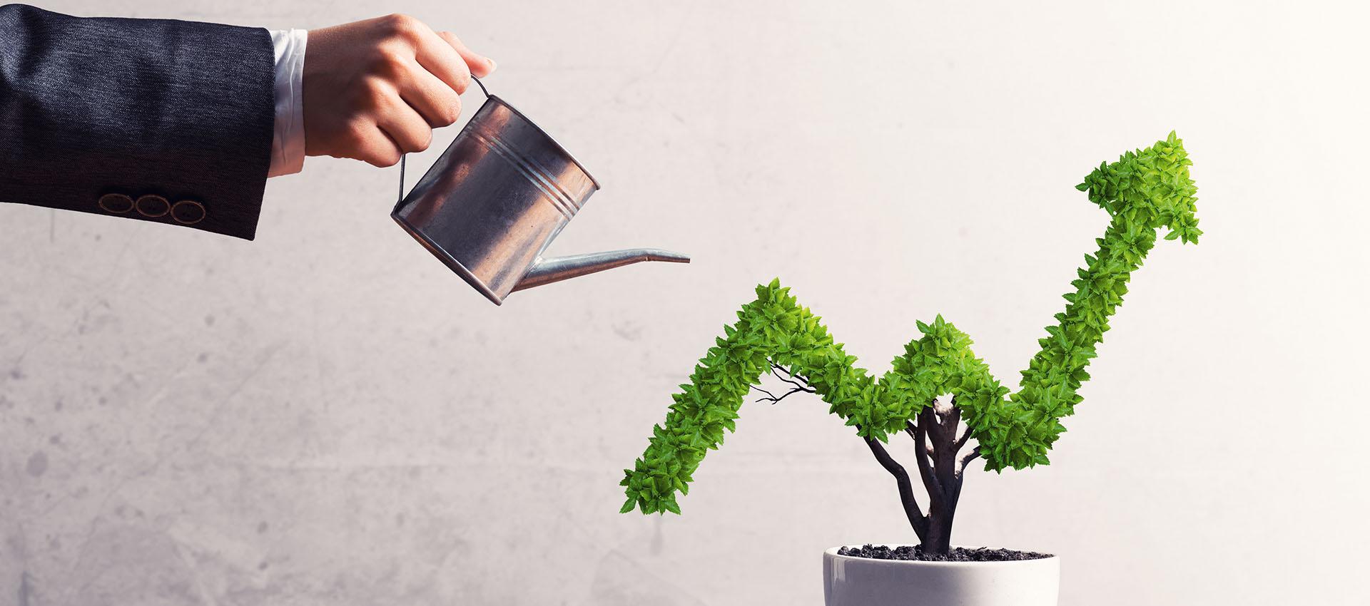 italgreenpower finanziamenti